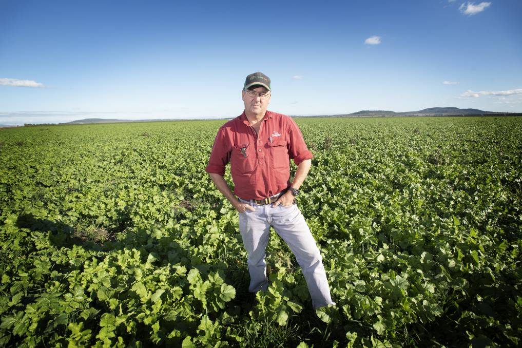 FUTURE PLANS: Breeza farmer John Hamparsum is relishing the best start to his season rain-wise but is concerned the proposed nearby coal mine will jeopardise his water, fears highlighted in a report on the coal mining industry's water use. Photo: Peter Hardin