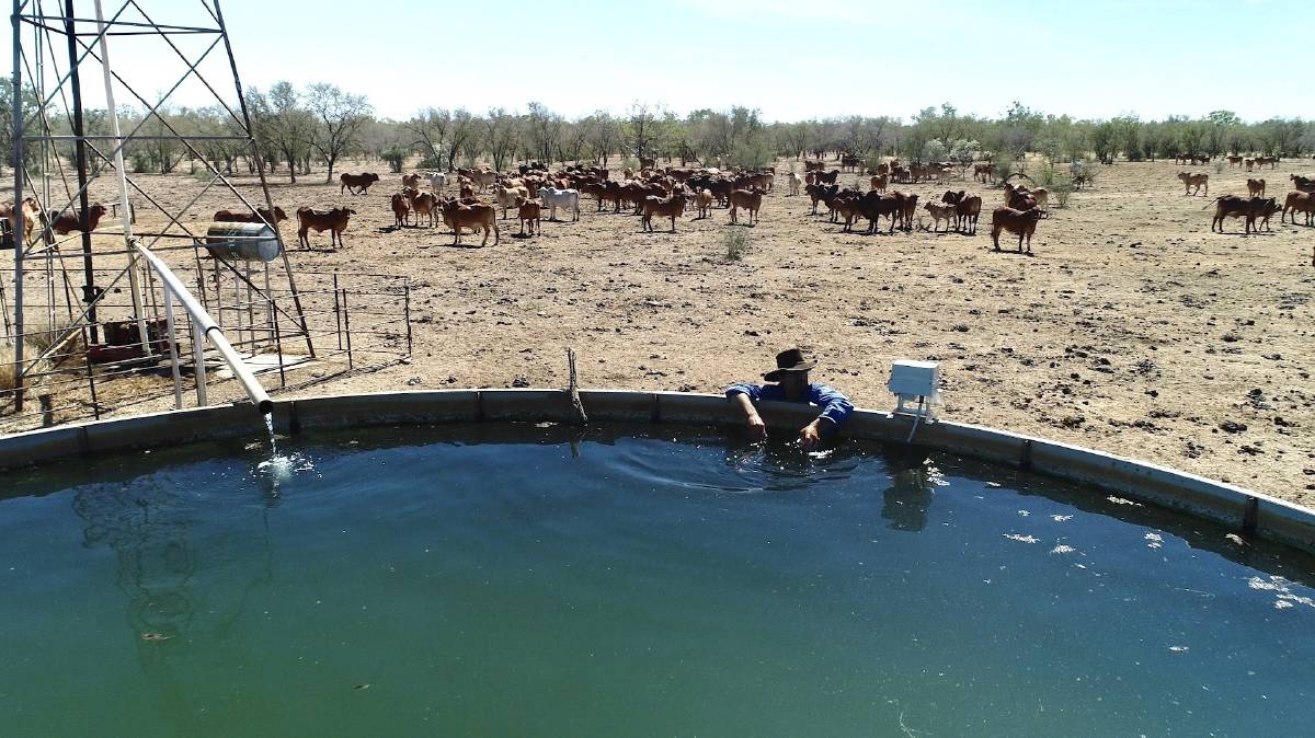 VIRTUAL CHECK: With a reported 400,000-plus water tanks on Australian farms, farmers spend many hours a week driving to and from them to ensure there are no leaks and enough water for livestock.